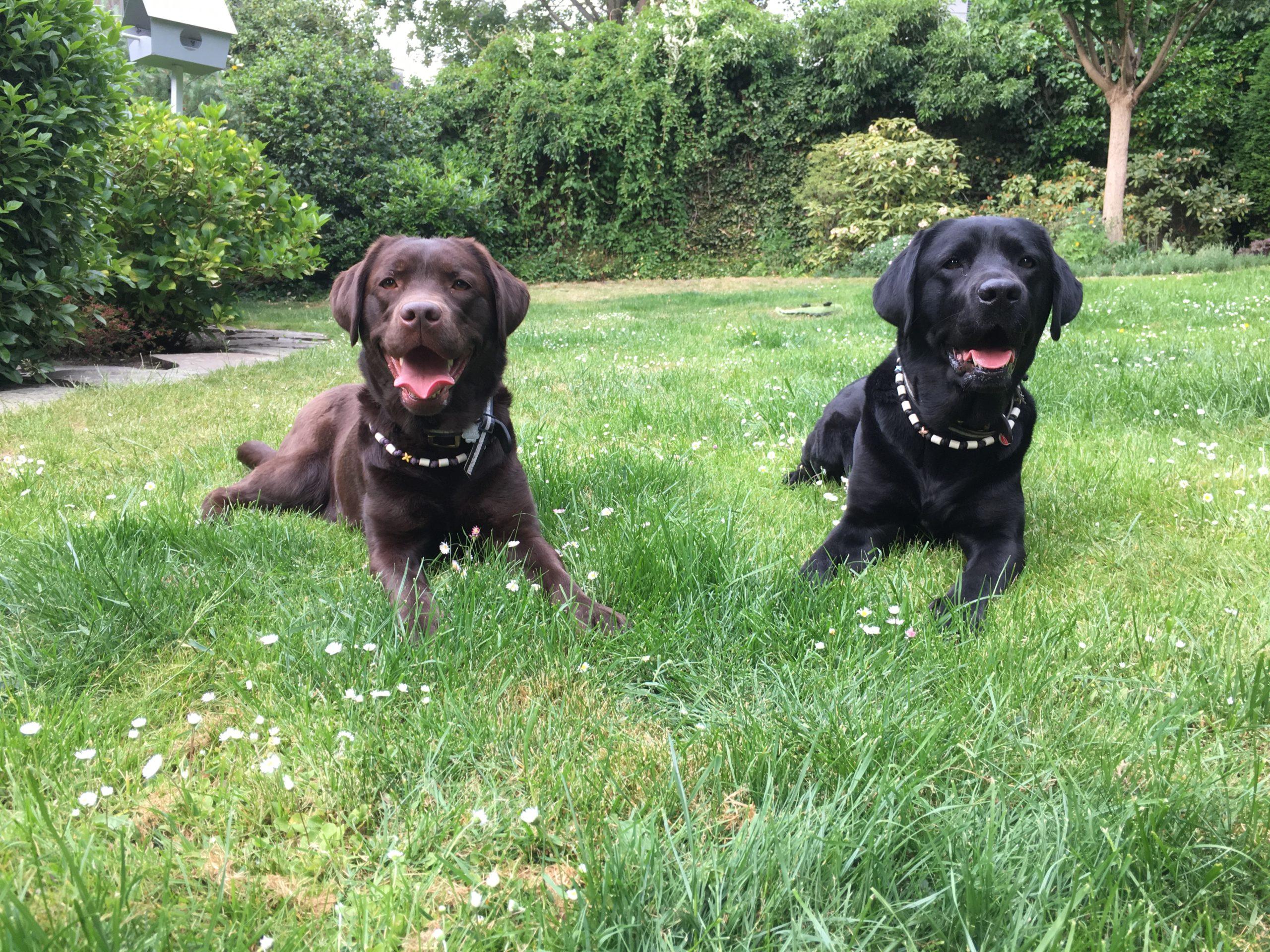 Leni und Ruby