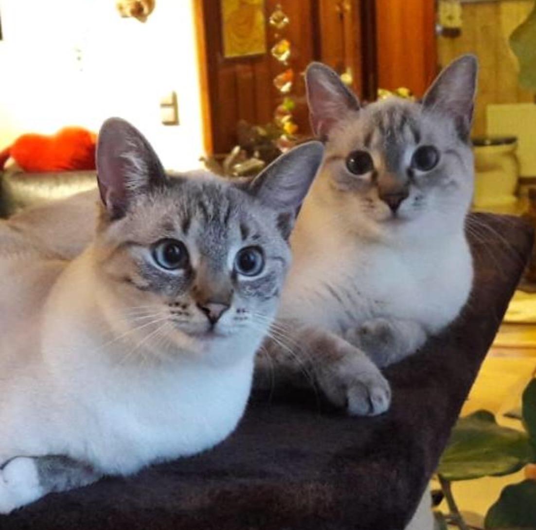 Bella und Marie
